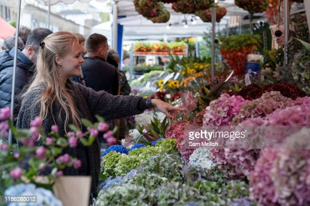 A lady shopping for hydrangea flowers at Columbia Road Flower Market on the 6th October 2019 in London in the United Kingdom Columbia Road Flower...