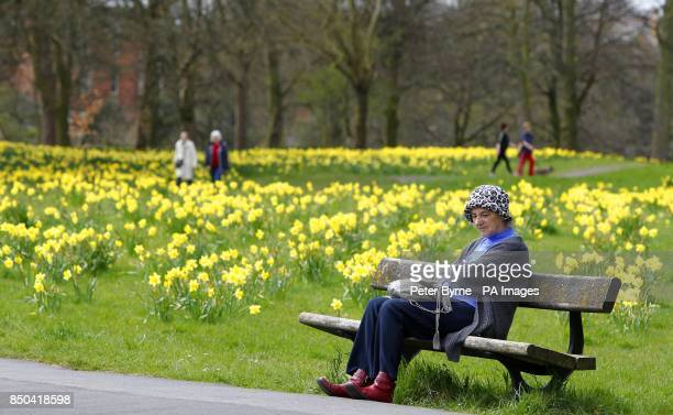 A lady sits on a bench in Sefton Park Liverpool during the warm spring weather