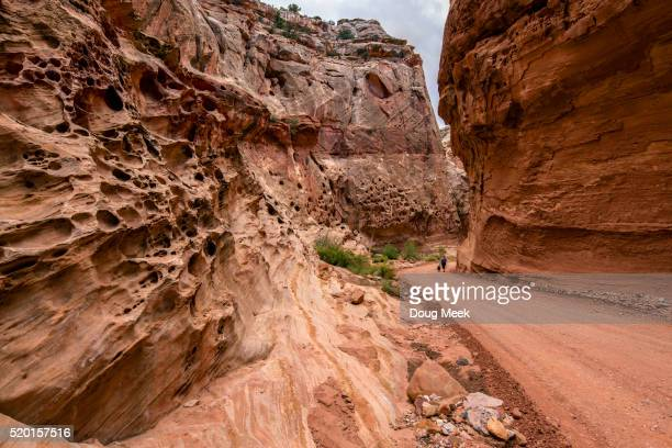lady walking dog through gorge in capitol reef national park, utah - capitol reef national park stock pictures, royalty-free photos & images