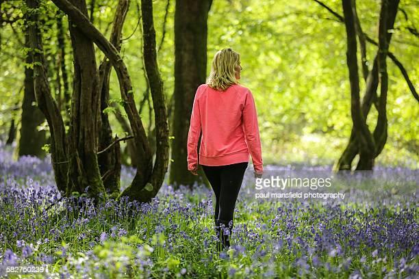 lady walking in bluebell wood - solo una donna matura foto e immagini stock