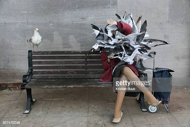 Lady with sea gulls art work by Banksy On the first day the show is open only a thousand locals who won free ticket gets an advanced entry to the...