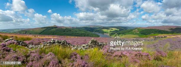 ladybower reservoir from bamford moor, derbyshire, england - peak district national park stock pictures, royalty-free photos & images