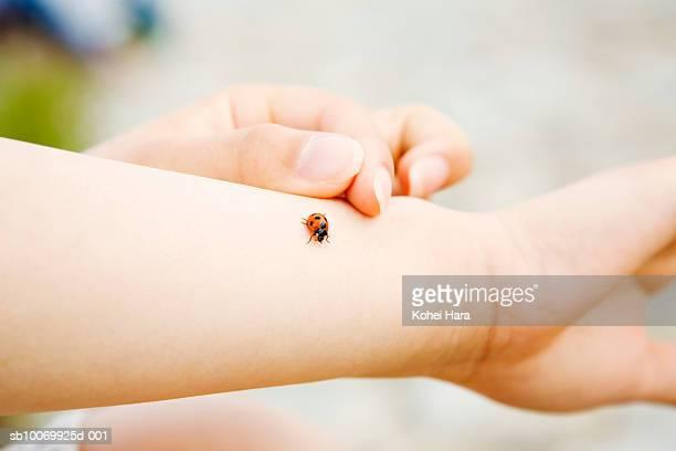 Ladybug on woman's arm, close-up