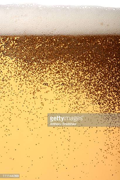 Lager with frothy head and bubbles
