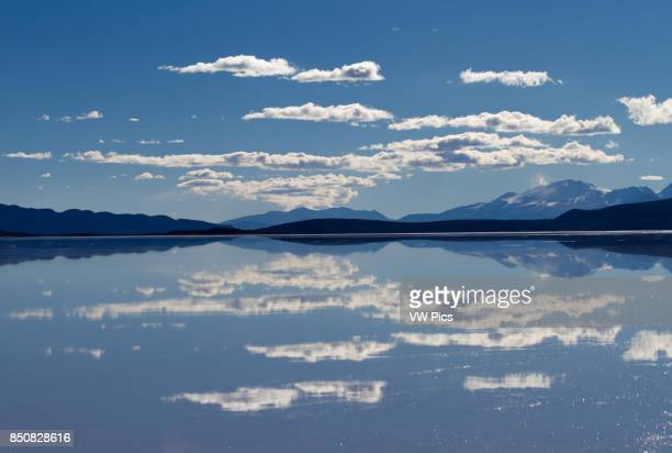 Lago Coipasa or Salar de Coipasa is a lake in Atahuallpa Province Oruro Department BoliviA At an elevation of 3657 m its surface area is 806 km_ It's...