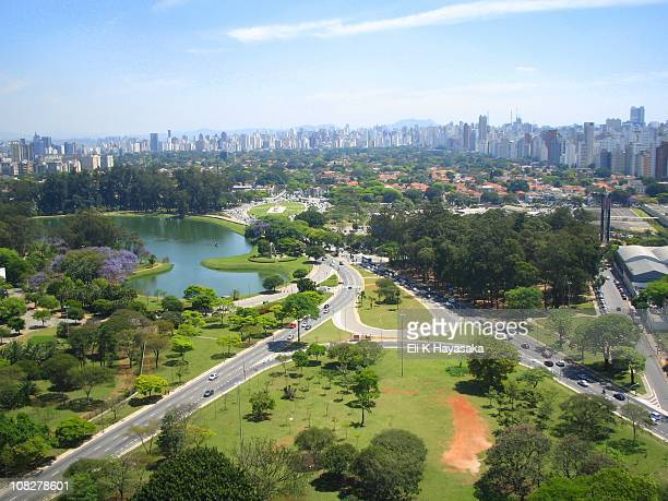 lago do ibirapuera - ibirapuera park stock pictures, royalty-free photos & images