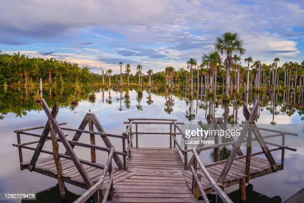 lagoa das araras - macaw's lake - nobres, mato grosso, brazil. - estado do mato grosso imagens e fotografias de stock