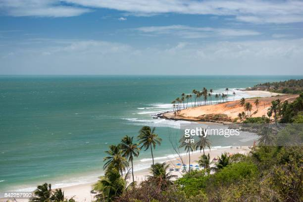 lagoinha beach, brazil - brasil stock pictures, royalty-free photos & images