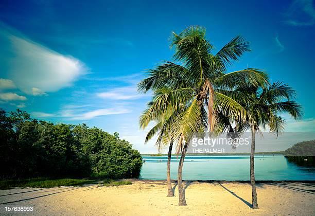 lagoon beach in the florida keys
