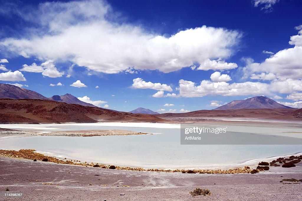 Lagoon in Altiplano, Bolivia : Stock Photo