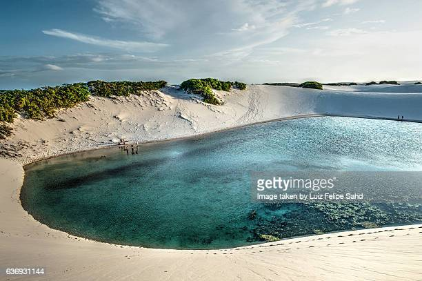 lagoon in the dunes - laguna fotografías e imágenes de stock