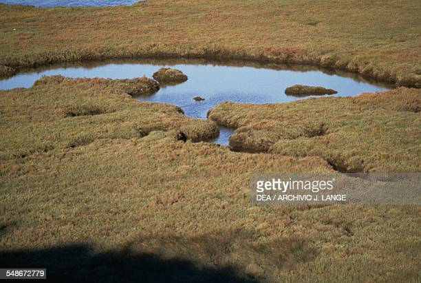 Lagoon in the Sado Estuary Nature Reserve Baixo Alentejo Portugal