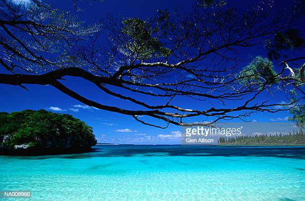 lagoon - new caledonia stock photos and pictures