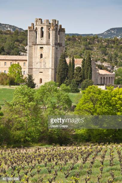 lagrasse, languedoc, france - languedoc rousillon stock pictures, royalty-free photos & images