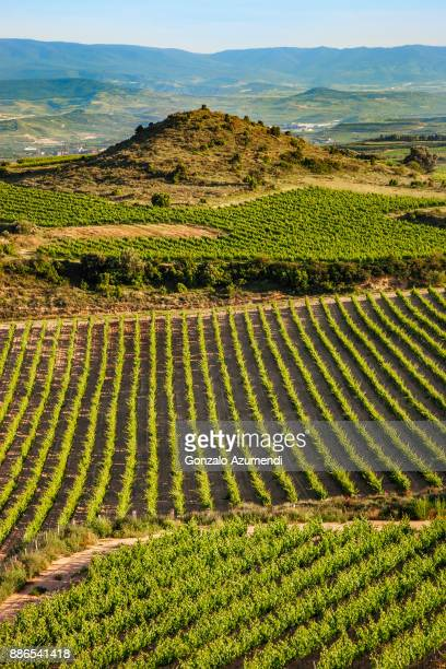 Laguardia in Rioja alavesa