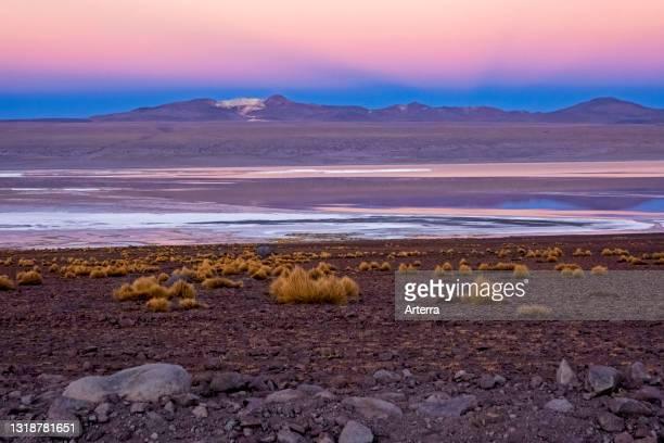 Laguna Colorada / Red Lagoon at sunset, salt lake in the Eduardo Avaroa Andean Fauna National Reserve, Sur Lípez Province, Potosí Department, Bolivia.