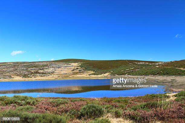 laguna de las yeguas in sanabria natural park - zamora stock pictures, royalty-free photos & images