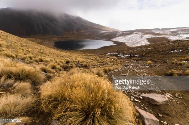 Laguna de Luna and alpine vegetation