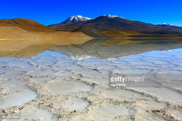 Laguna - Lake Tuyacto and Miniques snowcapped Volcano - Turquoise lake salt mirrored reflection and Idyllic Atacama Desert, Volcanic landscape panorama – San Pedro de Atacama, Chile, Bolívia and Argentina border