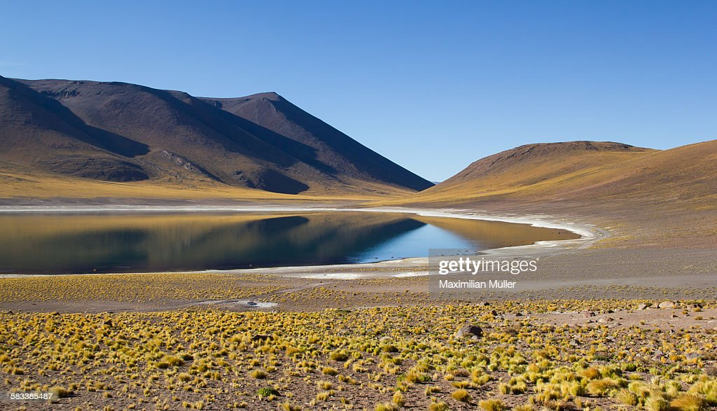Laguna Miñiques near San Pedro de Atacama, Chile : Stock Photo
