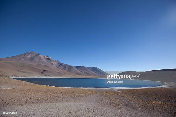 laguna miscanti in the atacama desert with a volcano. - alex saberi stock pictures, royalty-free photos & images