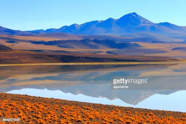 Laguna Tuyacto - Lake Tuyacto and Miniques snowcapped Volcano - Turquoise lake salt mirrored reflection and Idyllic Atacama Desert, Volcanic landscape panorama – San Pedro de Atacama, Chile, Bolívia and Argentina border