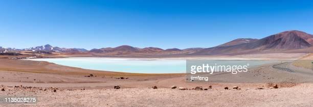 laguna tuyajto-san pedro de atacama, región de antofagasta, chile - paisajes de peru fotografías e imágenes de stock