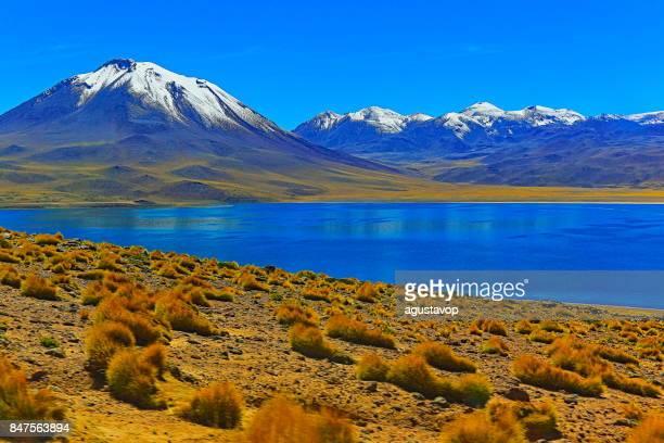 lagunas Miñiques Miscanti - lagos y nevados volcanes - lagos turquesa y desierto de Atacama idílico, paisaje volcánico panorama – San Pedro de Atacama, Chile, Bolivia y Argentina frontera