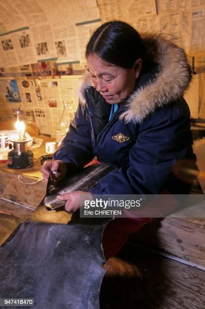 A l'aide de son oulou cette femme inuk egalise les pieces de cuir decoupees dans une peau de phoque barbu qui serviront de semelles a la confection...