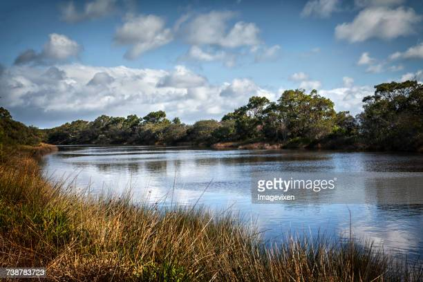 Lak, South Perth, Western Australia, Australia