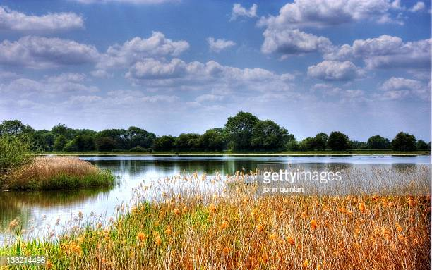 lake against cloudy blue sky in england - aylesbury stock photos and pictures