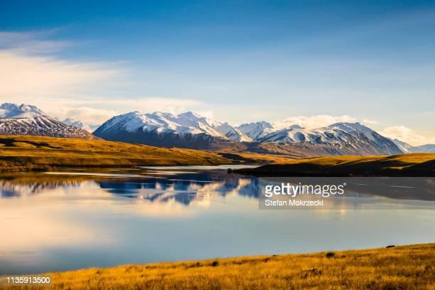 lake alexandrina, south island, new zealand. - mackenzie country fotografías e imágenes de stock