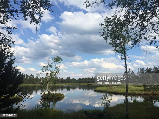 Lake Amidst Trees On Grassy Field Against Cloudy Sky