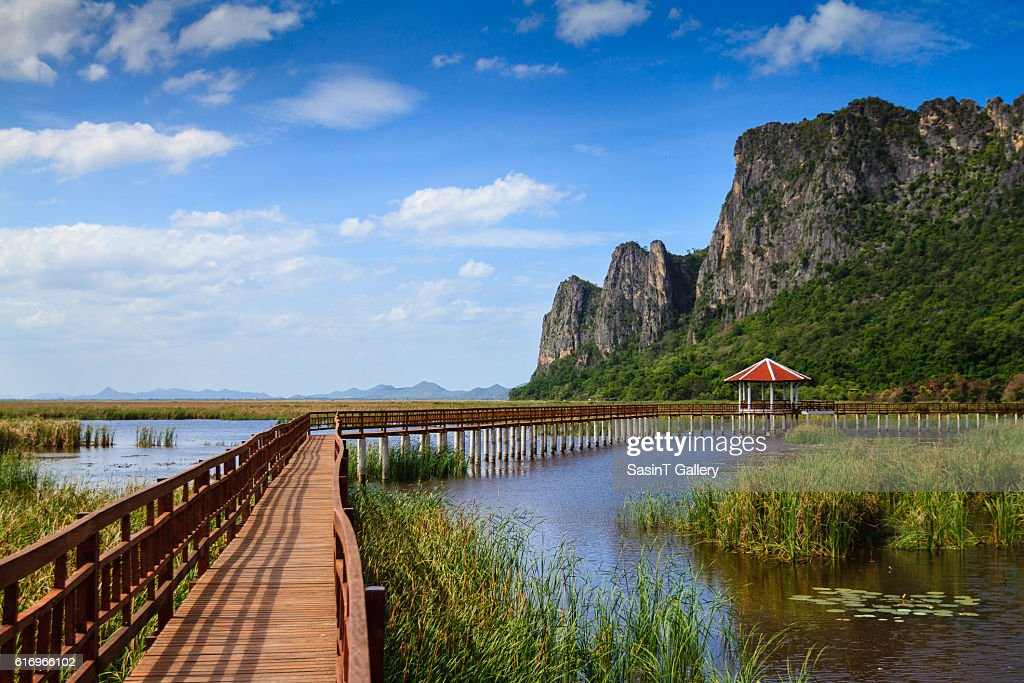 Lake and hill : Stock Photo