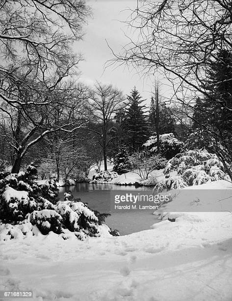 lake and trees covered with snow - {{relatedsearchurl(carousel.phrase)}} ストックフォトと画像
