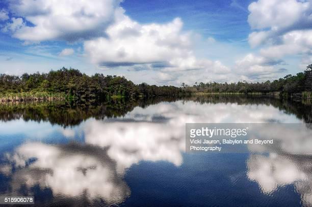 Lake at Six Mile Cypress Slough Preserve, Lee County, Florida