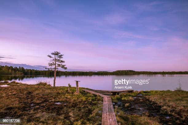 Lake at sunrise, Korvemaa, Estonia