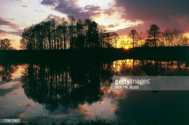 Lake at sunset in Bialowieza Forest National Park Poland