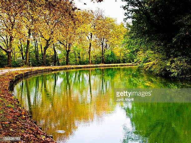 Lake by trees and reflection in water