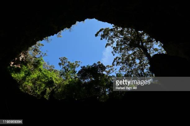 lake cave in margaret river region western australia - rafael ben ari imagens e fotografias de stock