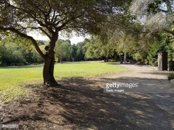lake chabot regional park - east bay regional park stock pictures, royalty-free photos & images