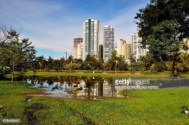 lake city londrina brazil - londrina stock pictures, royalty-free photos & images