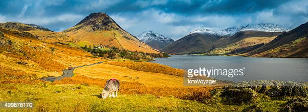 Lake District Wast Water Yewbarrow Great Gable mountain fells panorama
