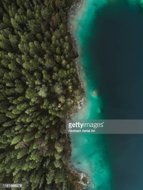 lake eibsee shoreline shot by drone, bavaria, germany - rivage photos et images de collection
