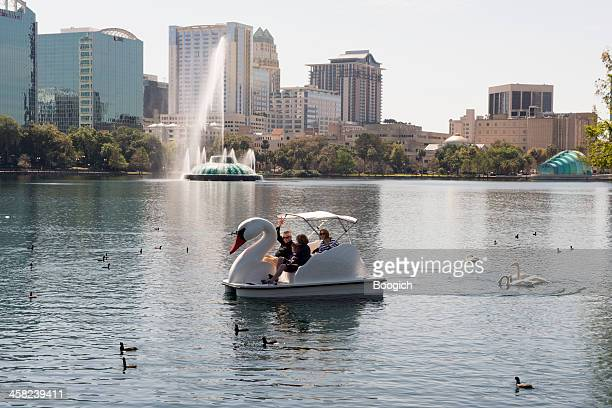 lake eola paddle boat swans - swan stock pictures, royalty-free photos & images