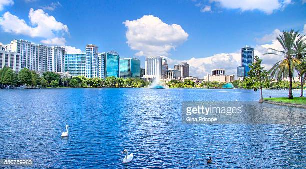 Lake Eola view, orlando