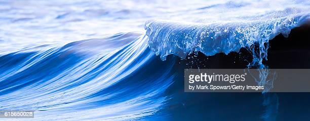 Lake Erie Surf