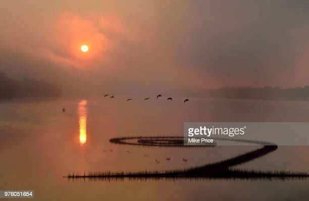 lake fayetteville at sunrise, arkansas, usa - fayetteville stock pictures, royalty-free photos & images