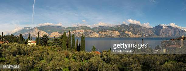 lake garda and malcesine, italy in morning light - véneto imagens e fotografias de stock