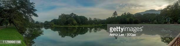 lake garden - arthur foto e immagini stock